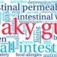 leaky gut word